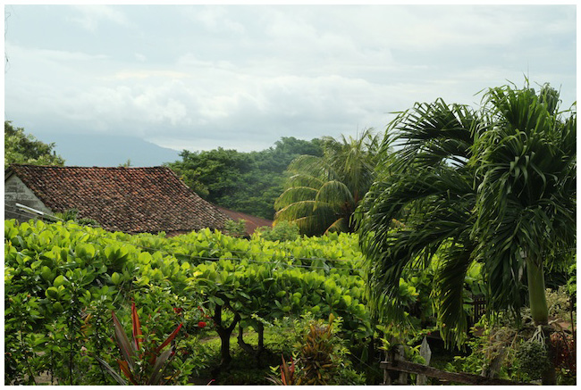 The view from our lunch spot - Finca Magdalena, Maderas, Ometepe, Nicaragua