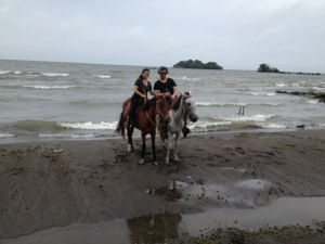 Horse rental Ometepe