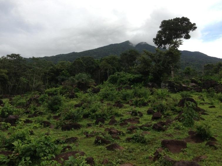 Maderas ometepe nicaragua